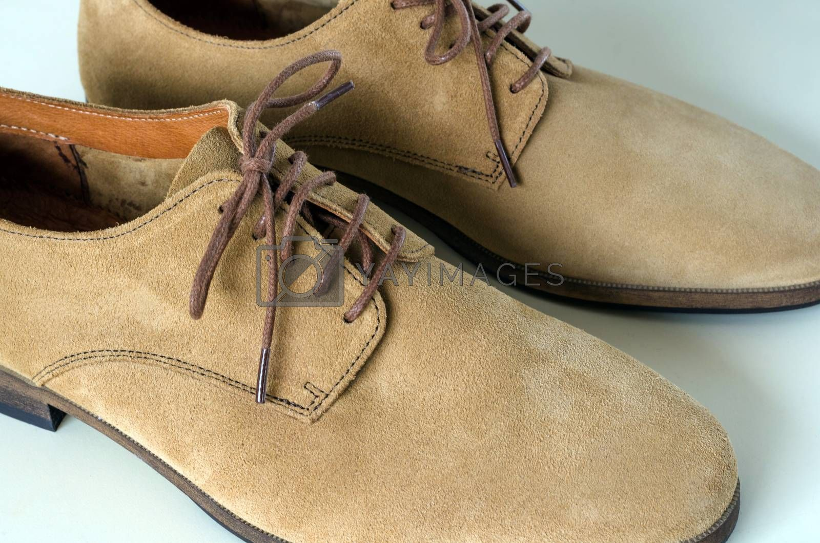 Royalty free image of Suede Leather Shoes  by siraanamwong