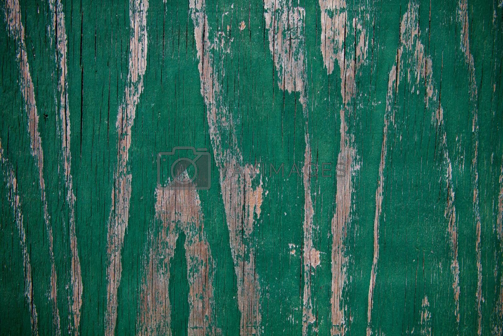 Royalty free image of old painted wooden background  by marylooo