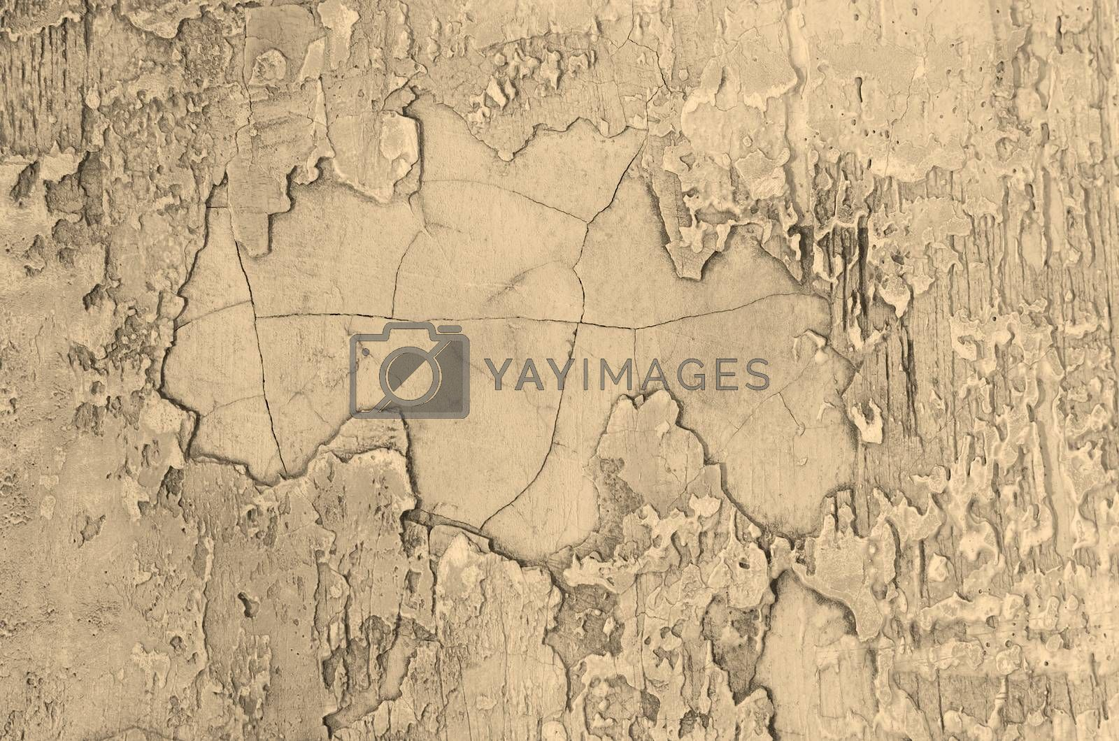 Royalty free image of Cement Wall Background  by zhekos