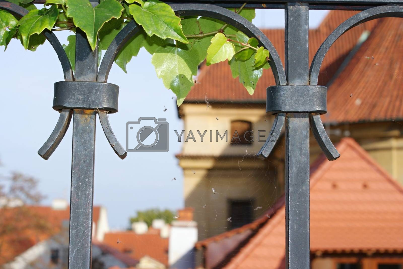 Royalty free image of Prague castle and its gardens by Dermot68