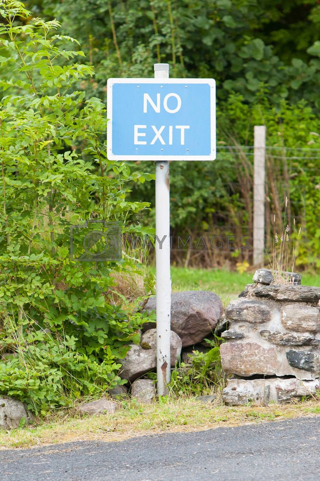 Royalty free image of Blue No Exit sign by michaklootwijk