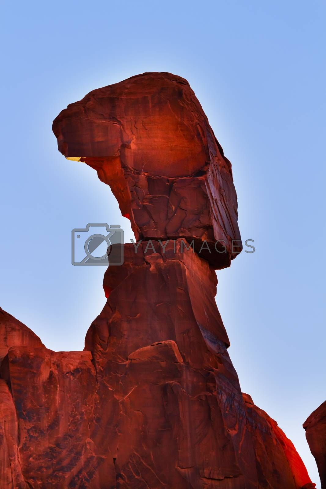 Royalty free image of Nefertiti Rock Park Avenue Arches National Park Moab Utah by bill_perry