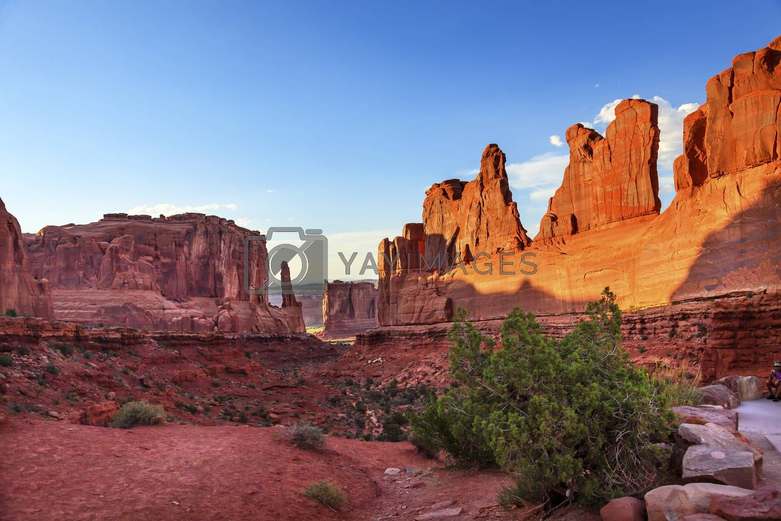 Royalty free image of Park Avenue Section Arches National Park Moab Utah  by bill_perry