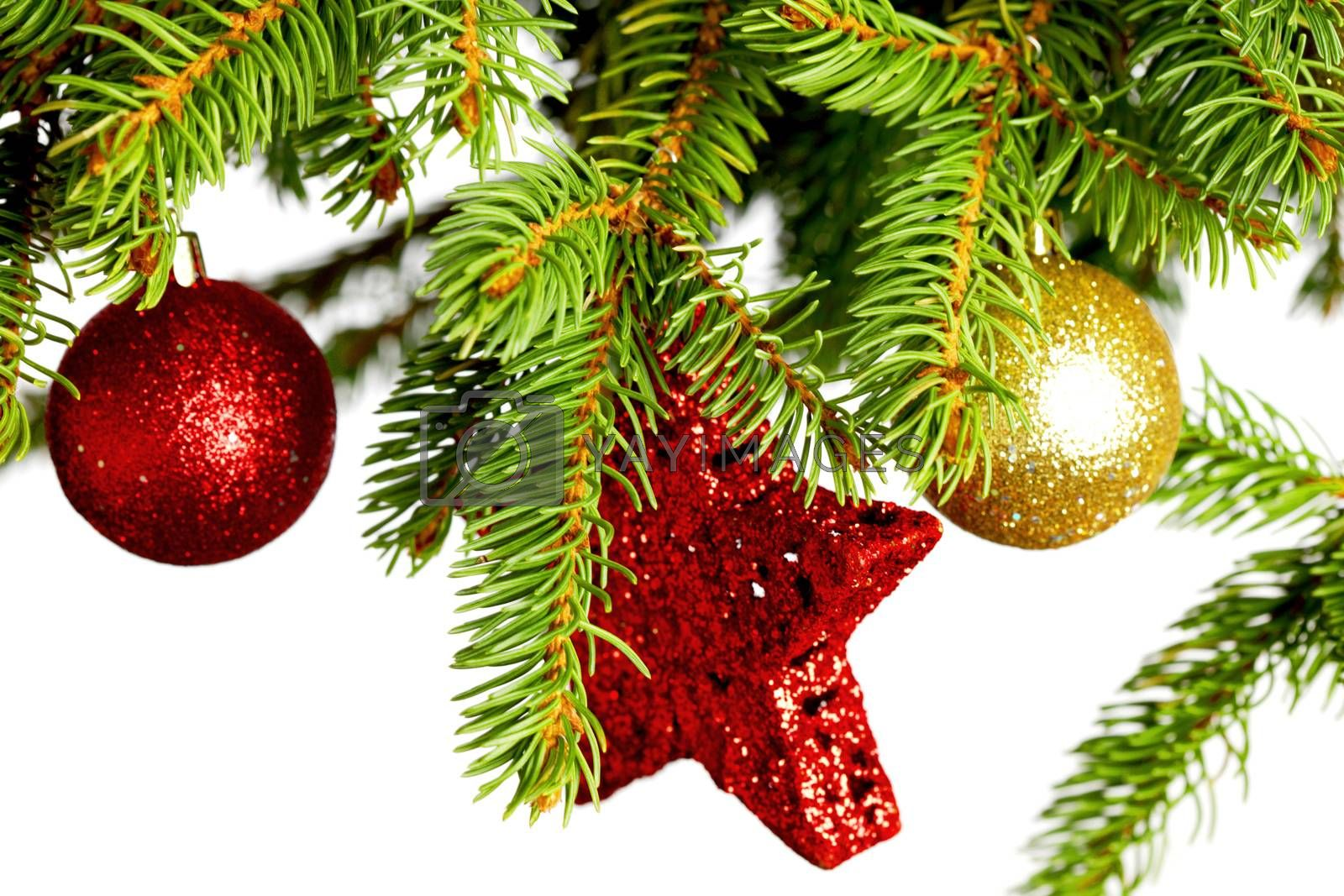 Royalty free image of Decorative balls on fir by Yellowj