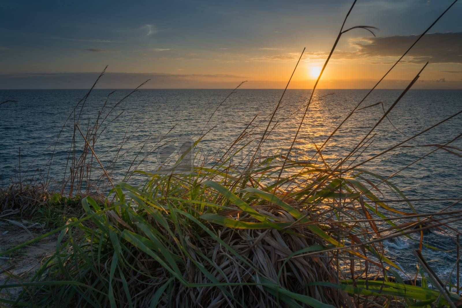 Sunset seascape with grass foreground, At Samed island,THAILAND
