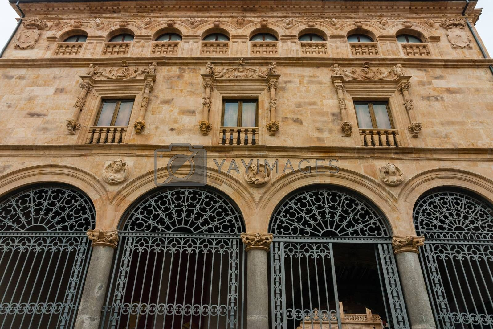 Main facade of La Salina Palace in Salamanca by imagsan