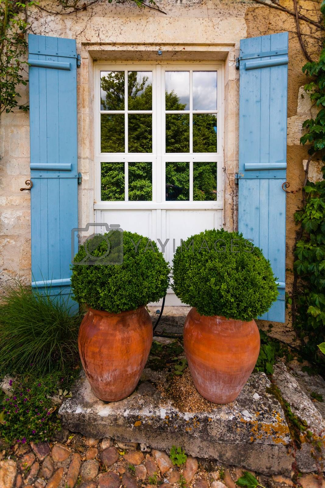 Beautiful gardening composition with two big pots with bojs inside next to a nice door in the countryside of the french region of Dordogne