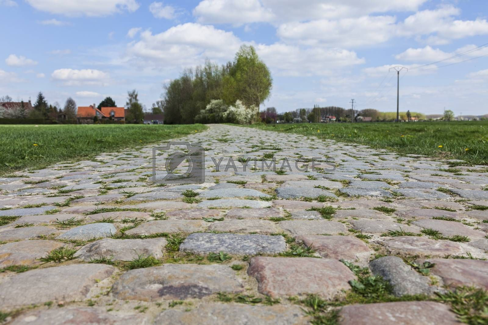 Cobbelstone road located in the North of France near Lille. On such roads every year is organized one of the most famous one day cycling race Paris-Roubaix.
