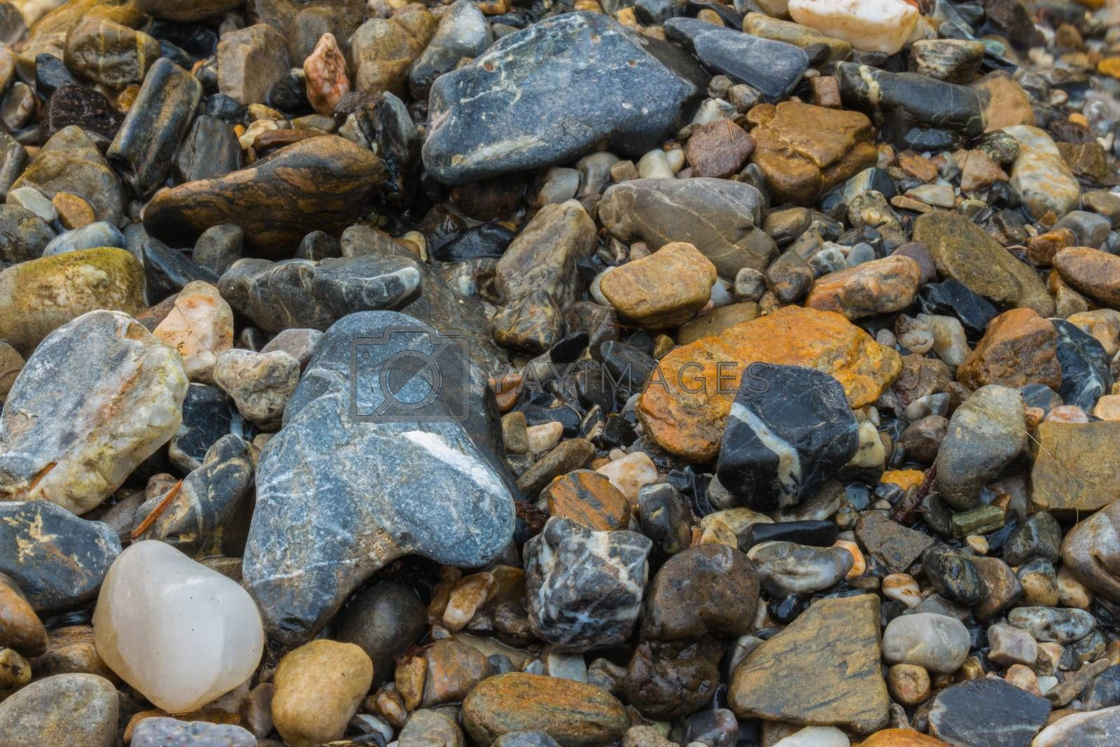 Colorful stones of a river landscape in the Alps