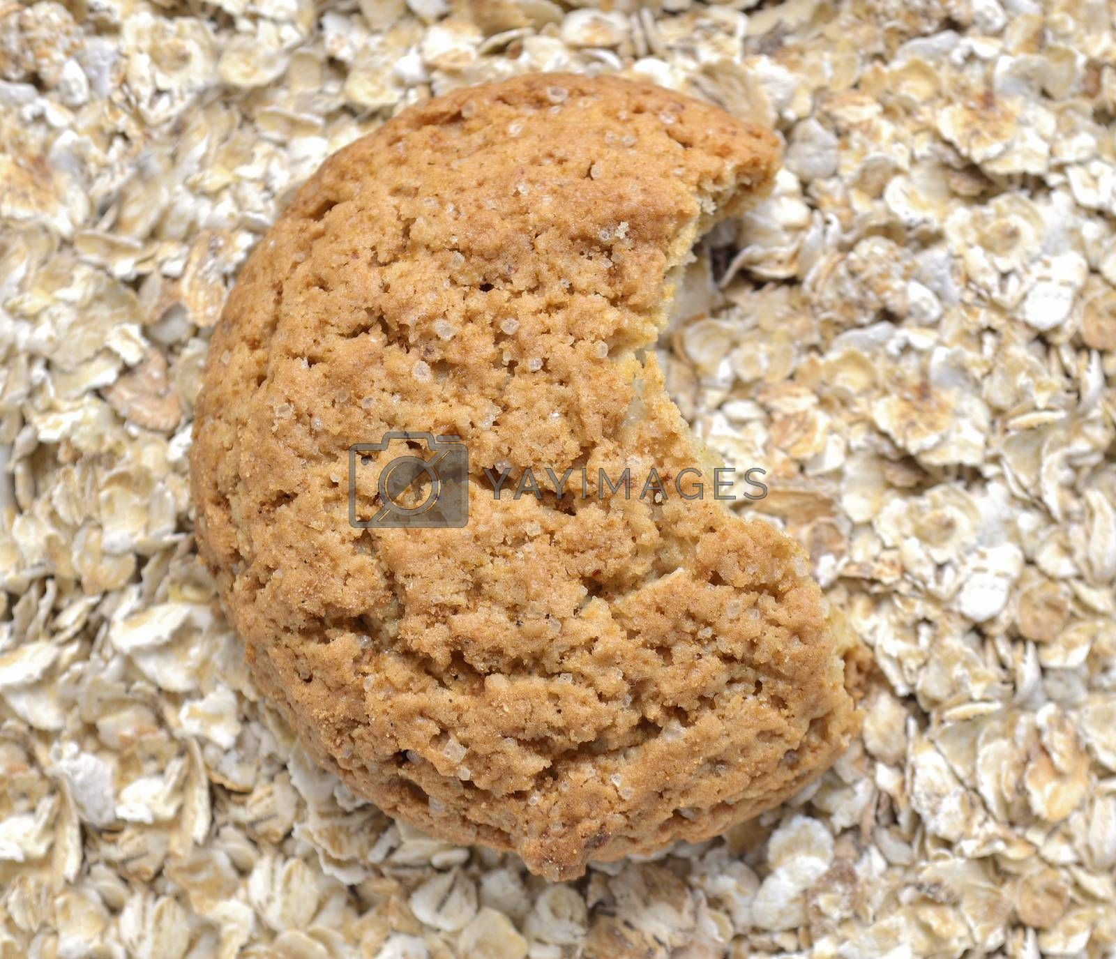 bitten oat cookie over oat flakes background