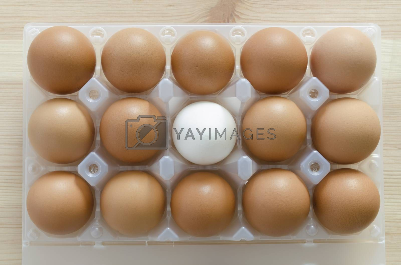 set of red eggs with white one inside plastic package