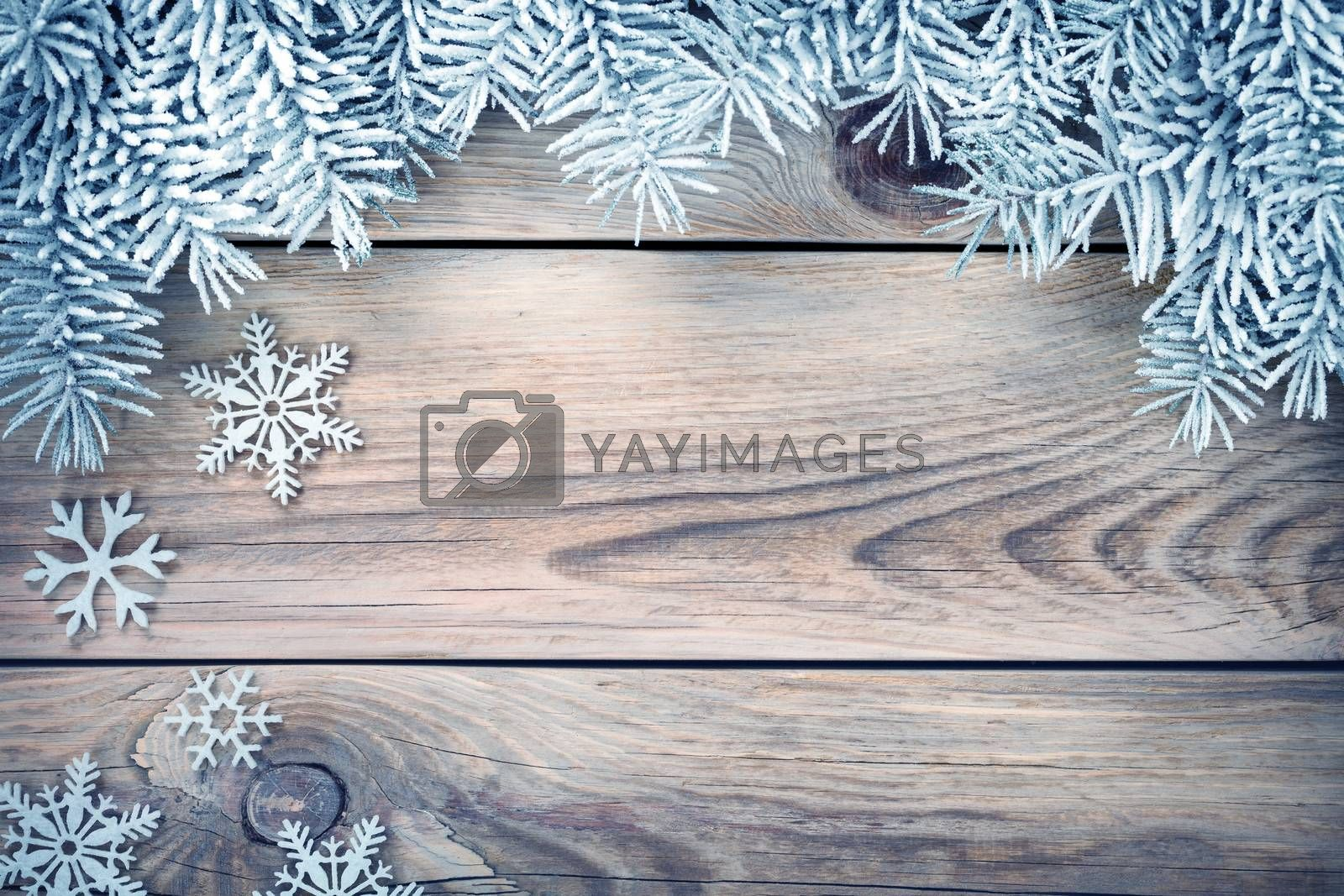 Winter background with spruce tree covered with snow and white snowflakes. Copy space. Top view