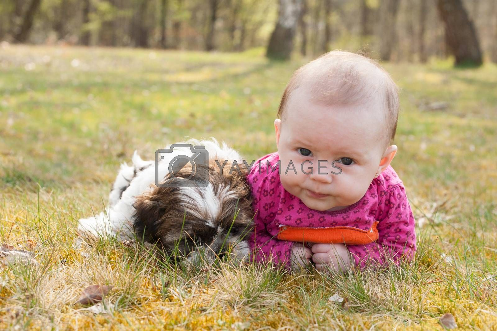 Cute puppy and baby in the park by DNFStyle