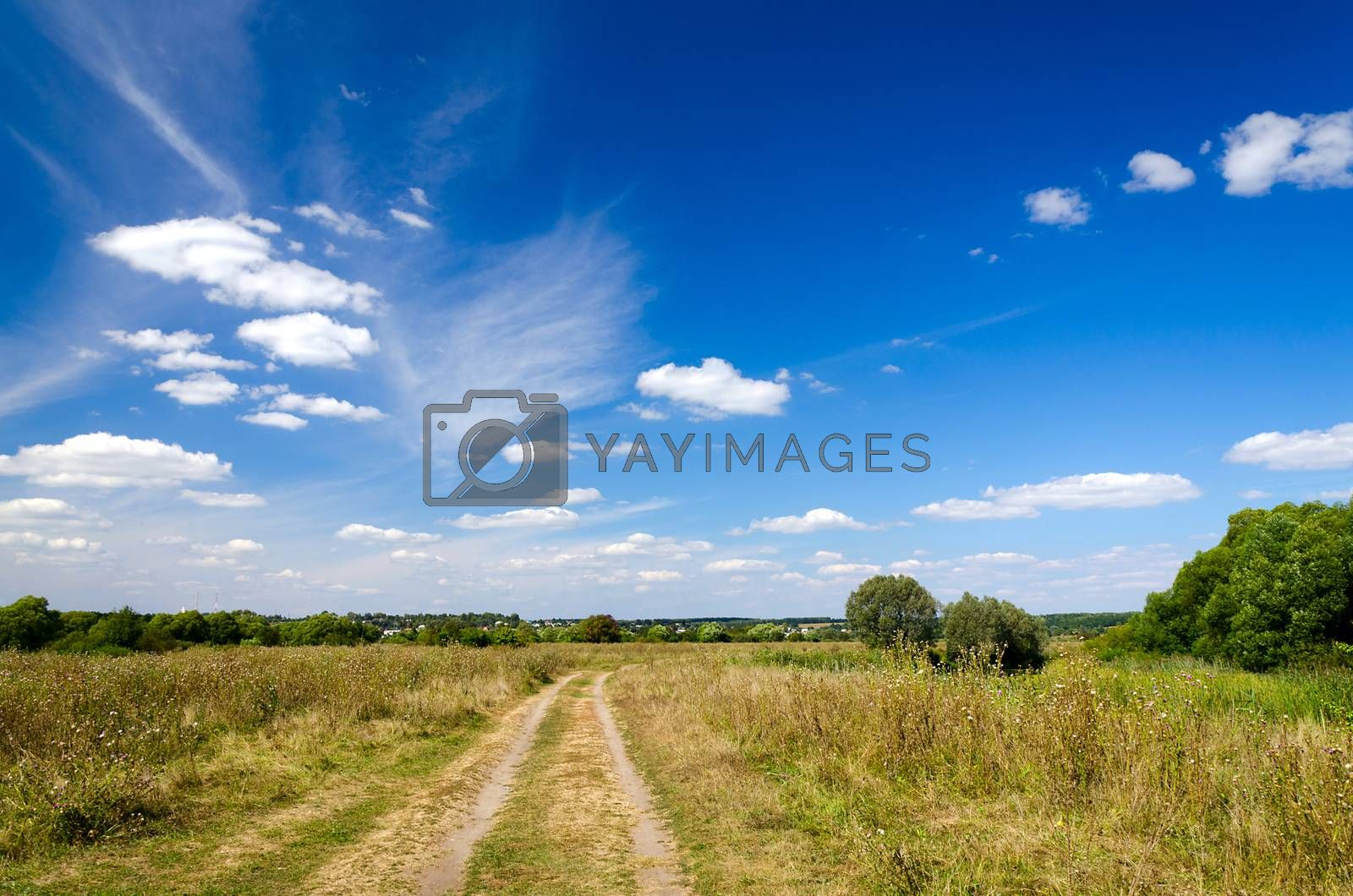 Landscape with dirt road in the countryside in autumn