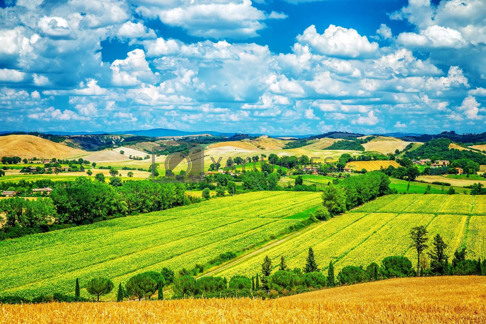 Amazing landscape, beautiful fresh green valley, countryside panoramic scene, beauty of nature, travel and tourism concept