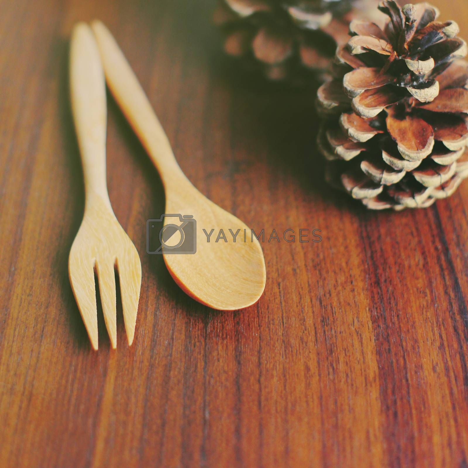 Wooden spoon and fork with pine cone, retro filter effect