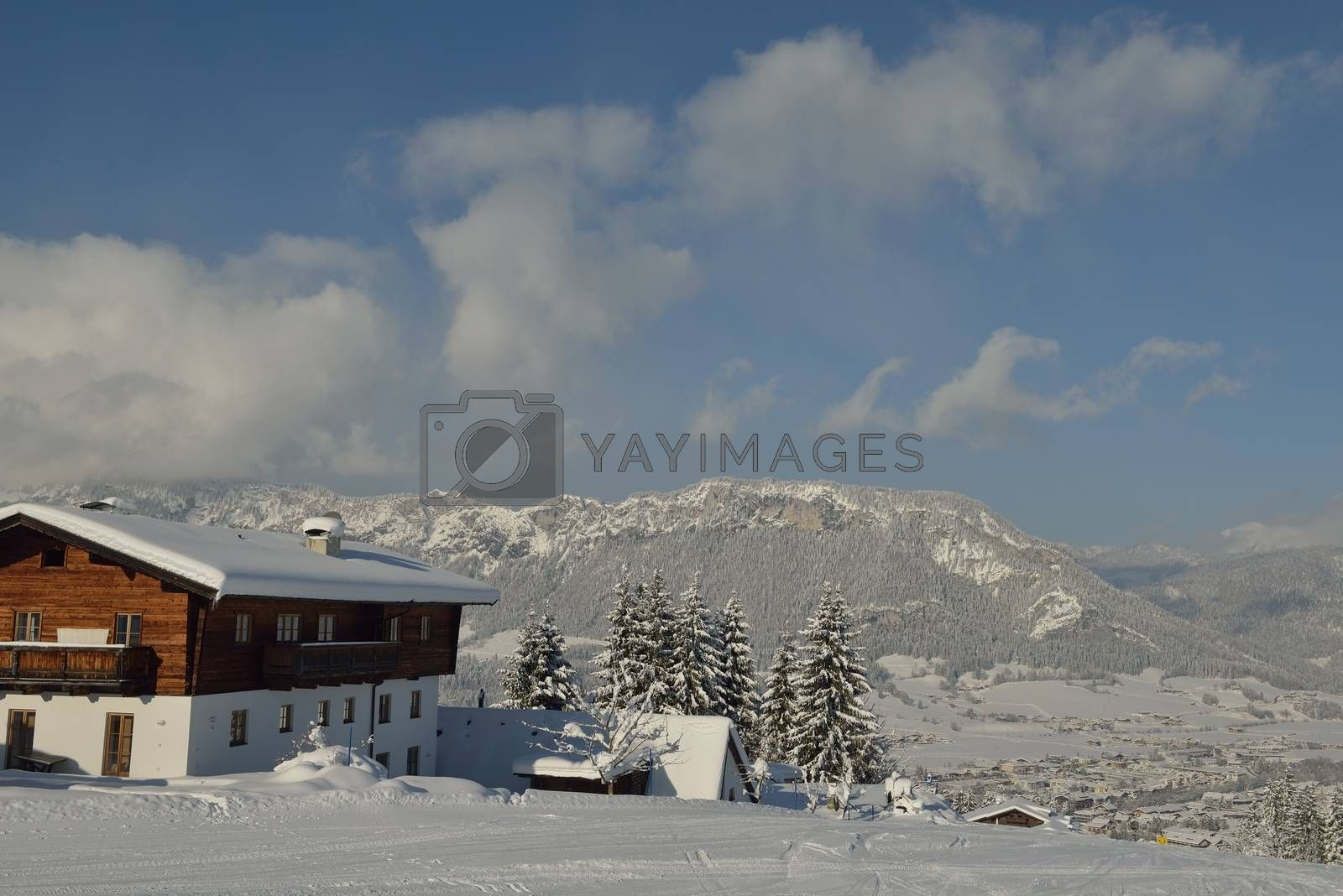 winter nature landscape  mountaint  with tree and fresh snow