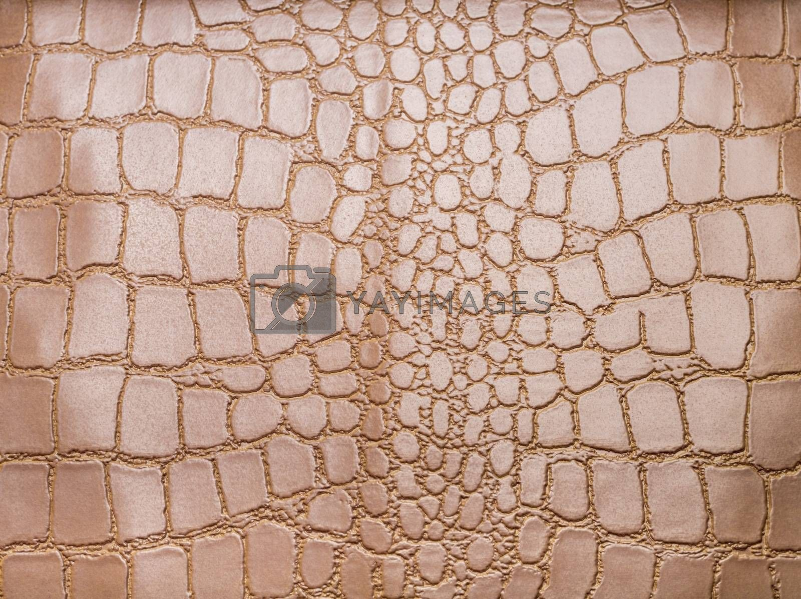 Macro picture of a texture for backgrounds.