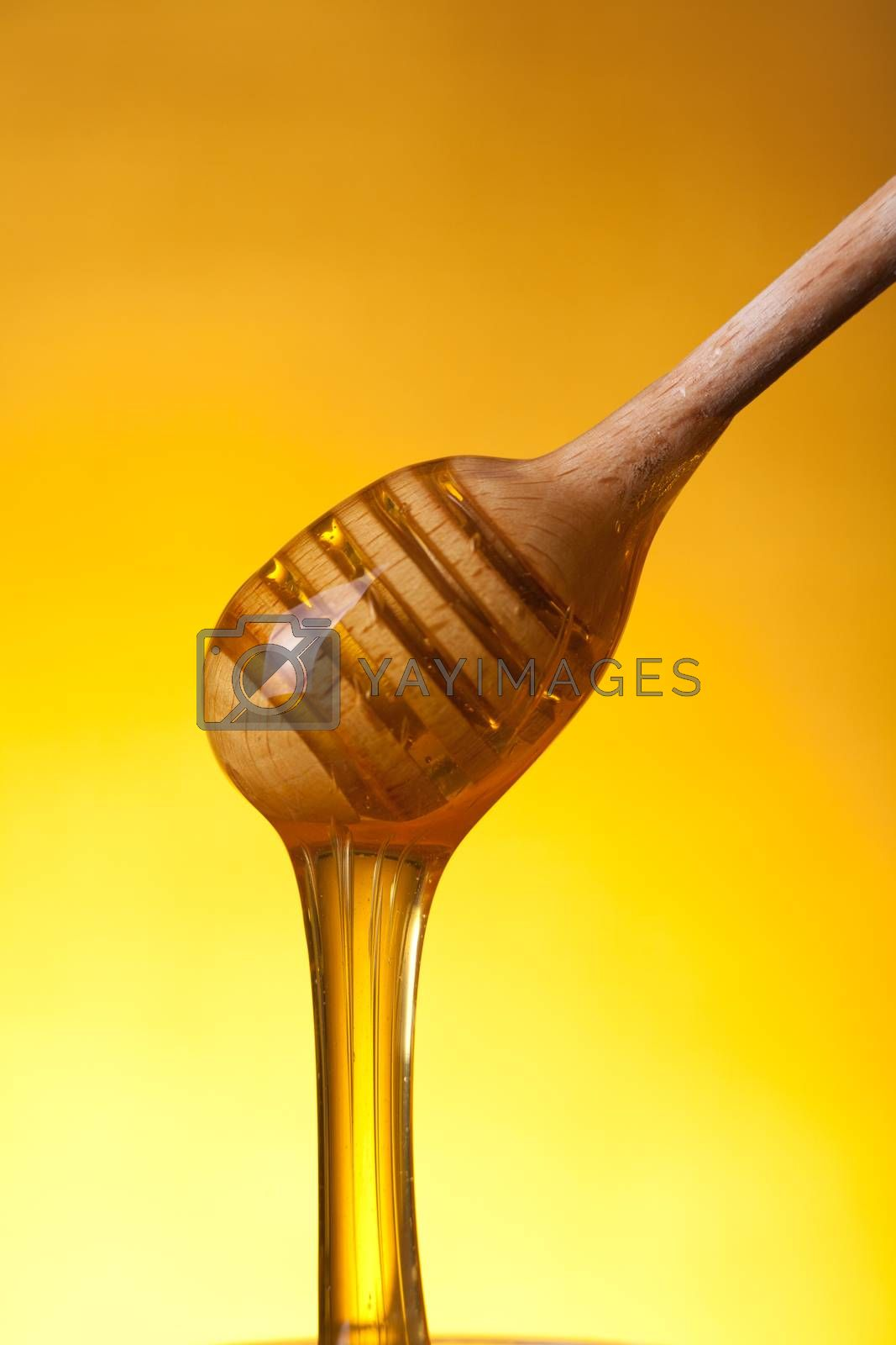 Close-up shot of wooden drizzler with flowing honey over yellow background