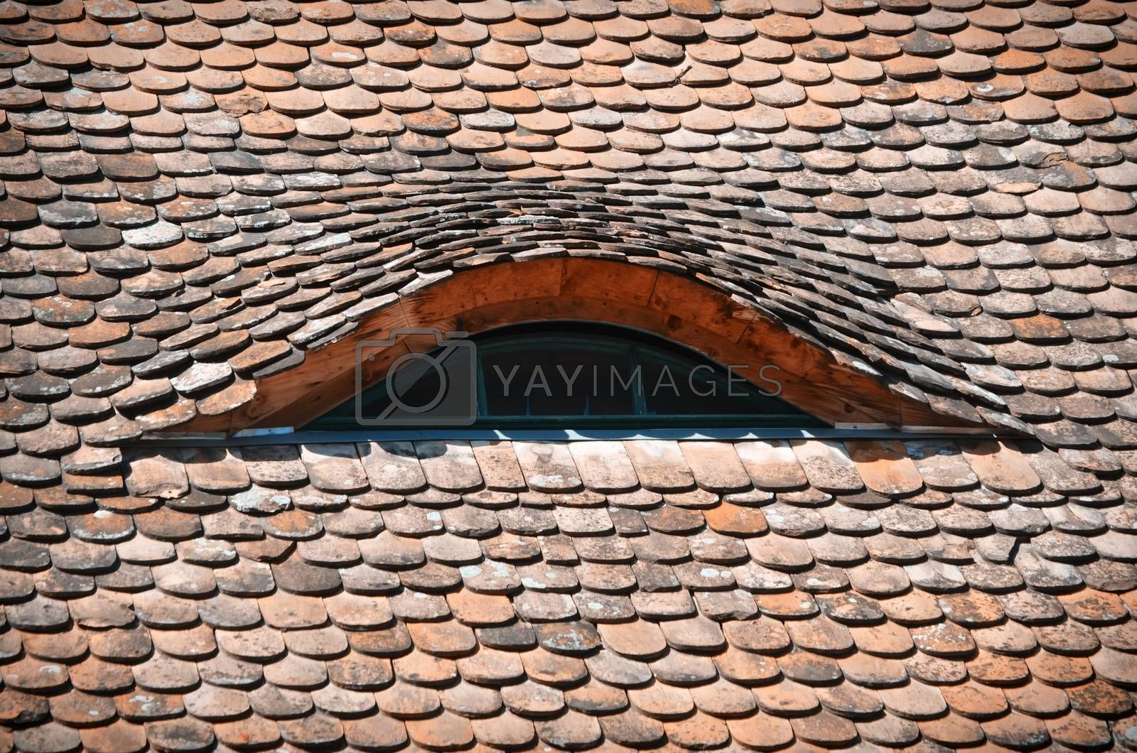 Photo of The Old Red Stone Roof