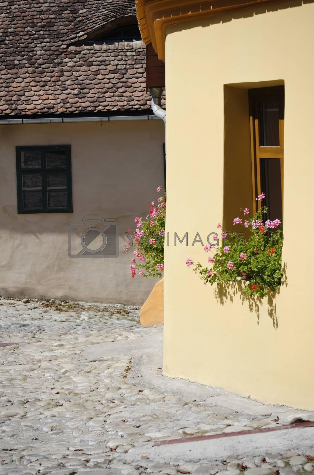 Medieval Town Sighisoara Romania by razvodovska
