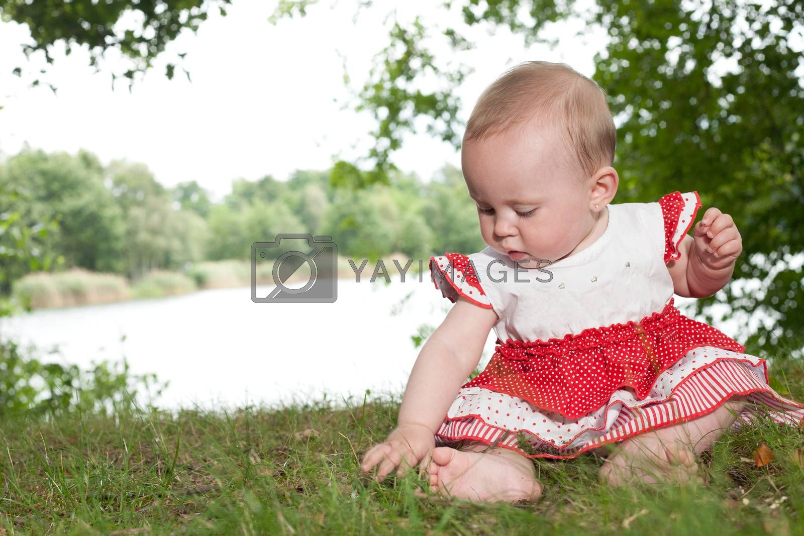 Baby is playing with the grass by DNFStyle