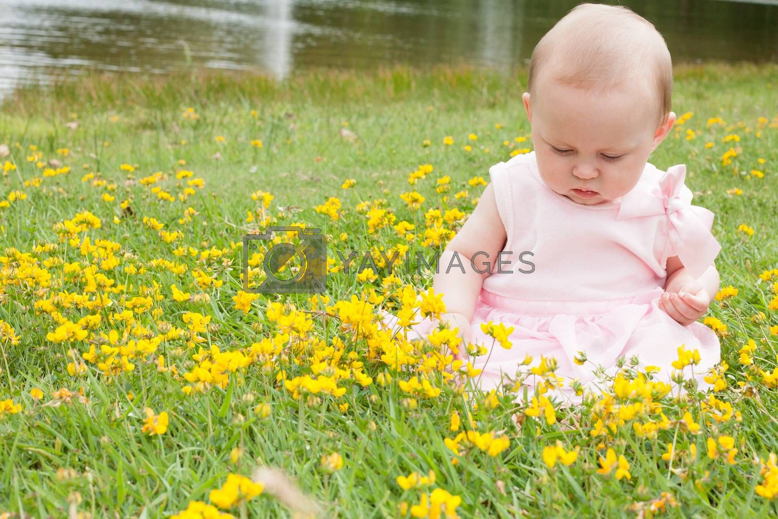 baby and buttercups by DNFStyle