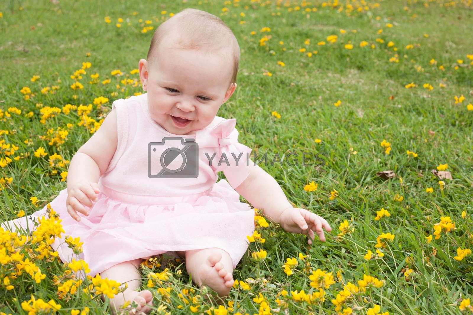 Baby's fun with buttercups by DNFStyle