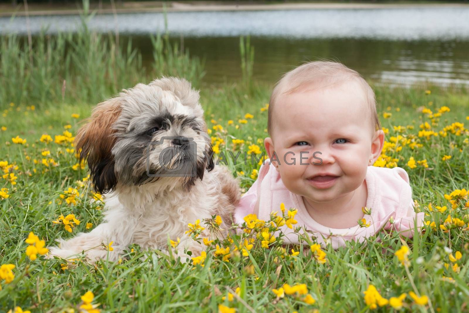 Baby and puppy in the field with buttercups by DNFStyle
