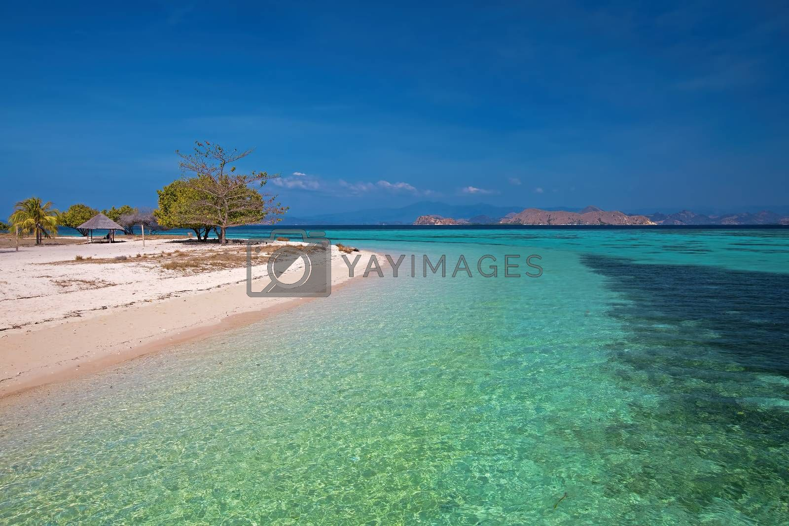 Royalty free image of Komodo Island by kjorgen