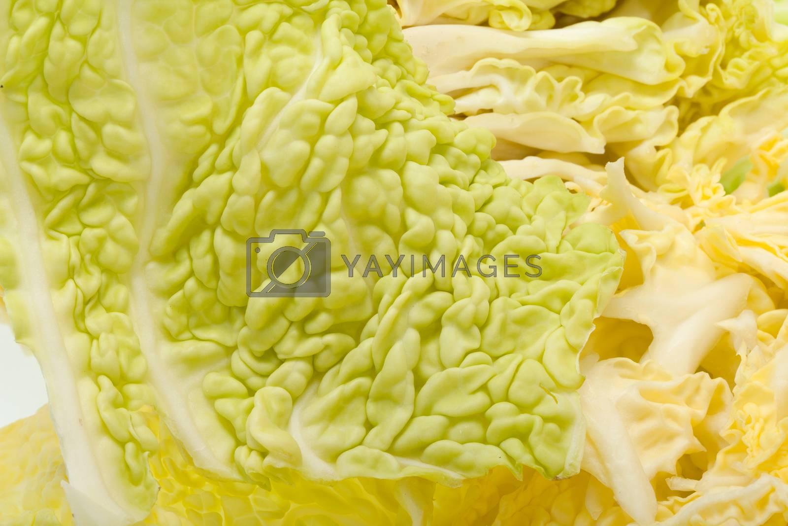 fresh savoy cabbage  isolated on white background