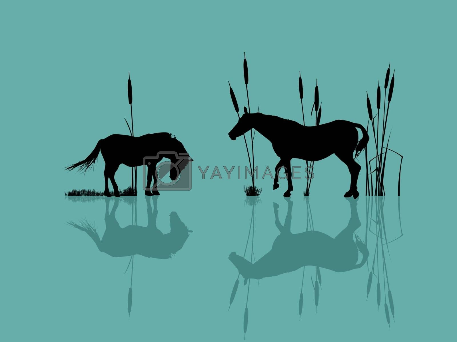 Background romantic illustration with horses at the water