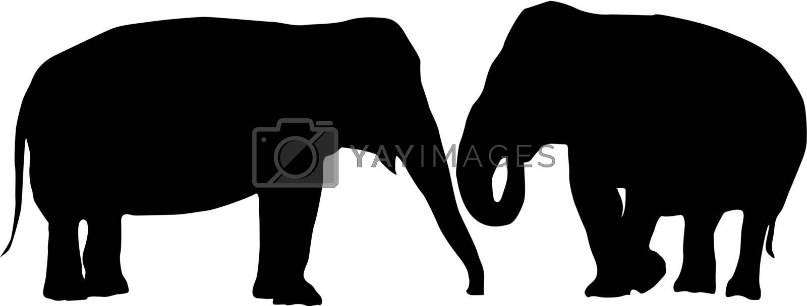 Two elephants love card, isolated objects on white background