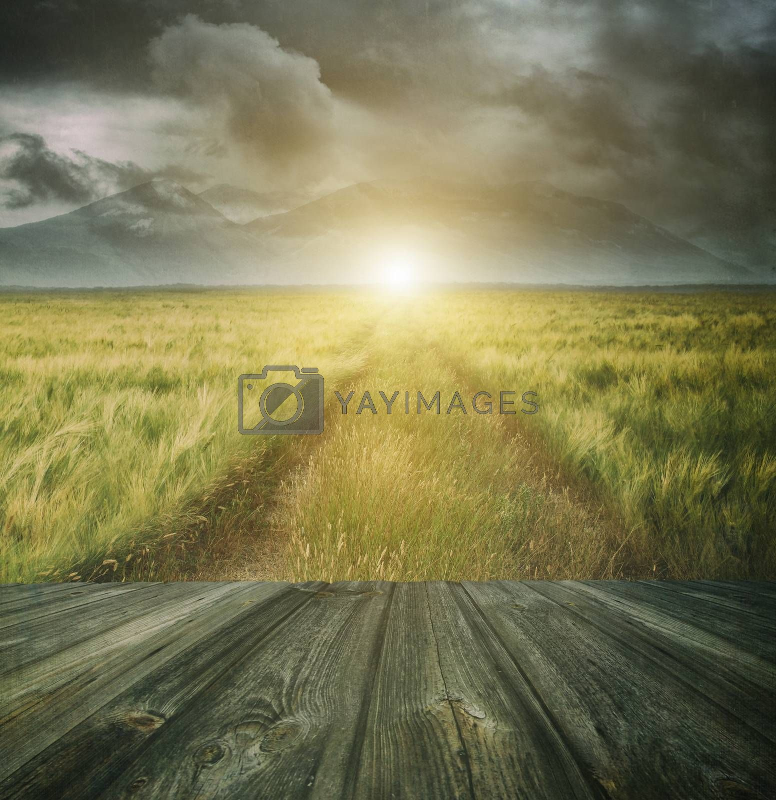 Wood floor with a prairie path and sky in background