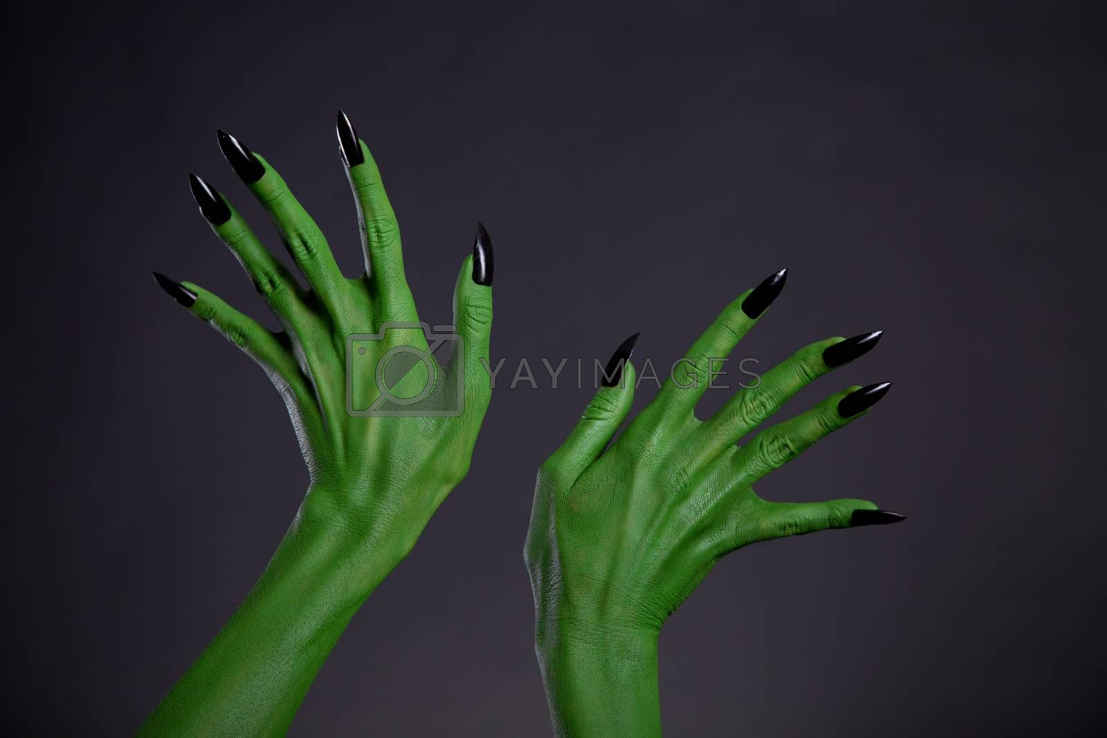 Green monster hands with black nails, Halloween theme, studio shot on black background