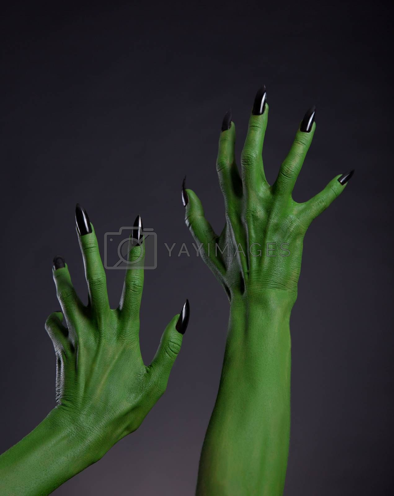 Green witch hands with black nails stretching up, Halloween theme, studio shot on black background