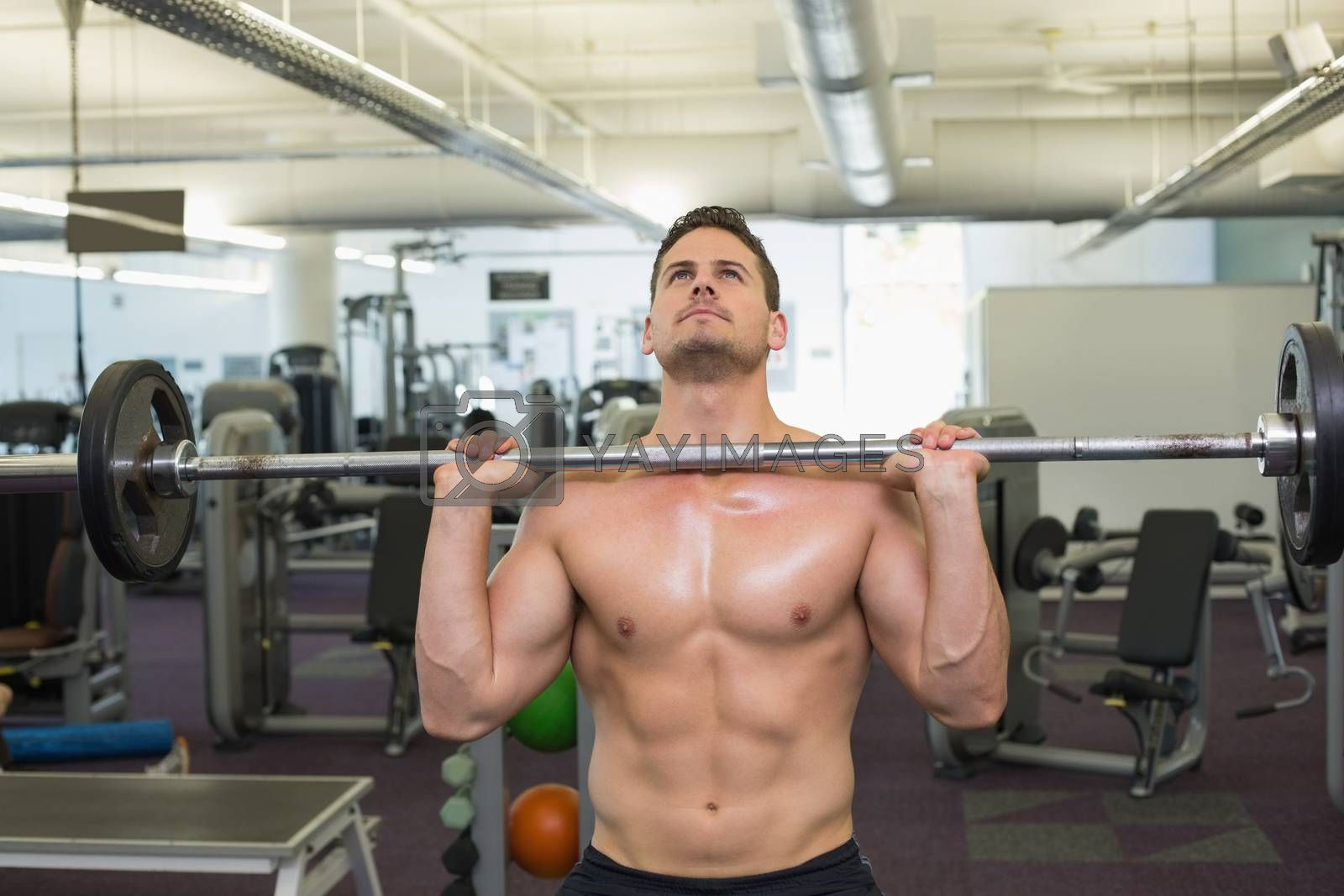 Shirtless bodybuilder lifting heavy barbell weight at the gym