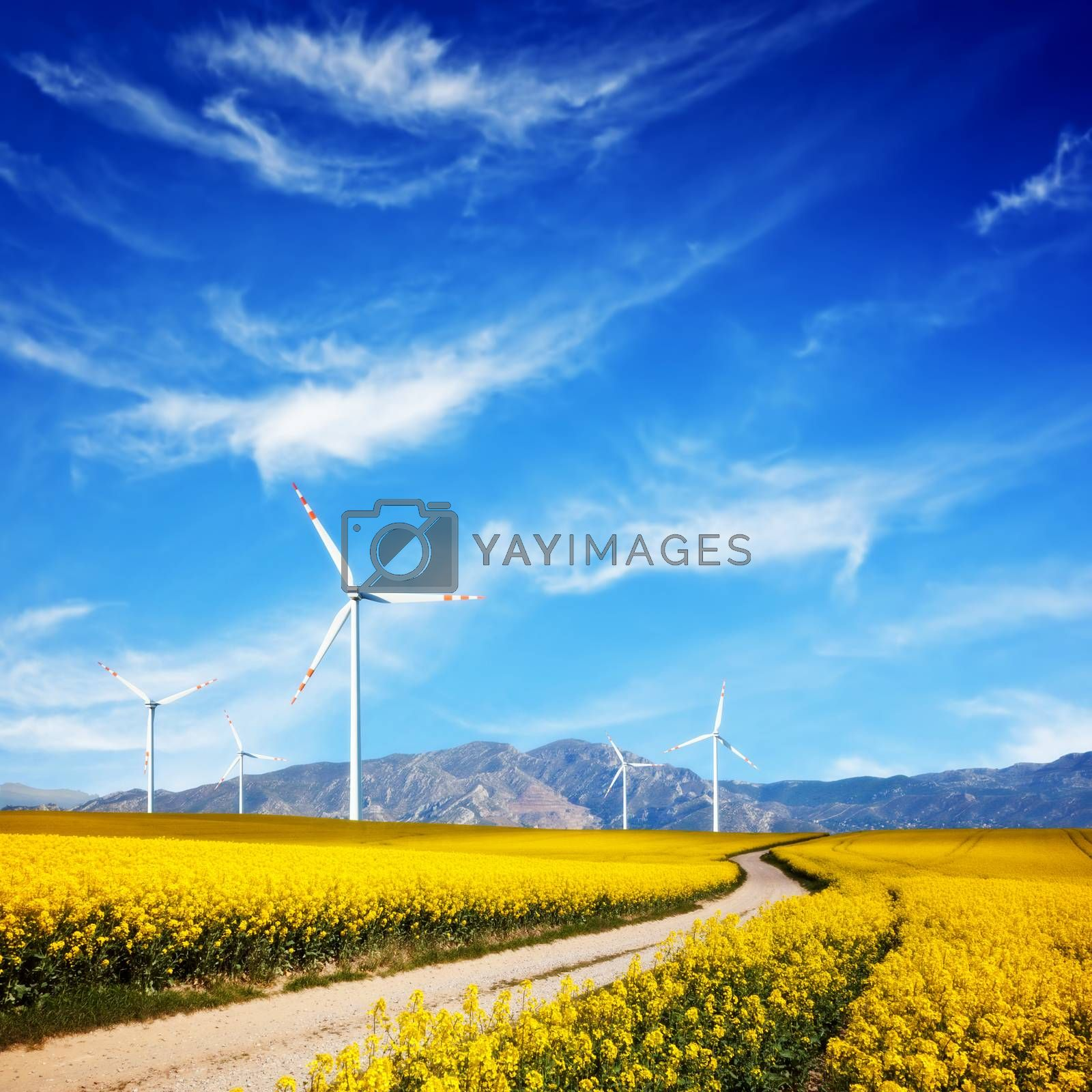 Royalty free image of Wind turbines on spring field. Alternative, clean and natural source of energy by photocreo