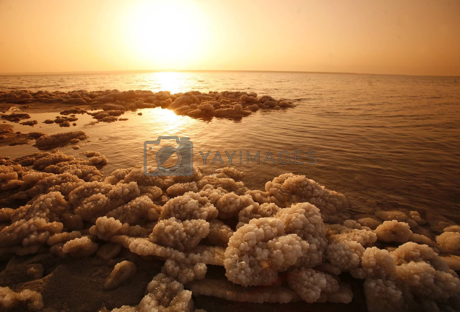 The coast with natural salt of the death sea neat the Village of Mazraa in Jordan in the middle east.