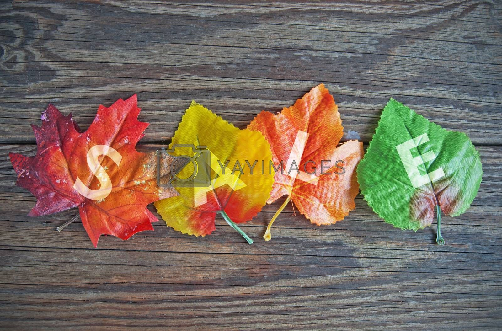 Autumn leaves with sale sign on wood