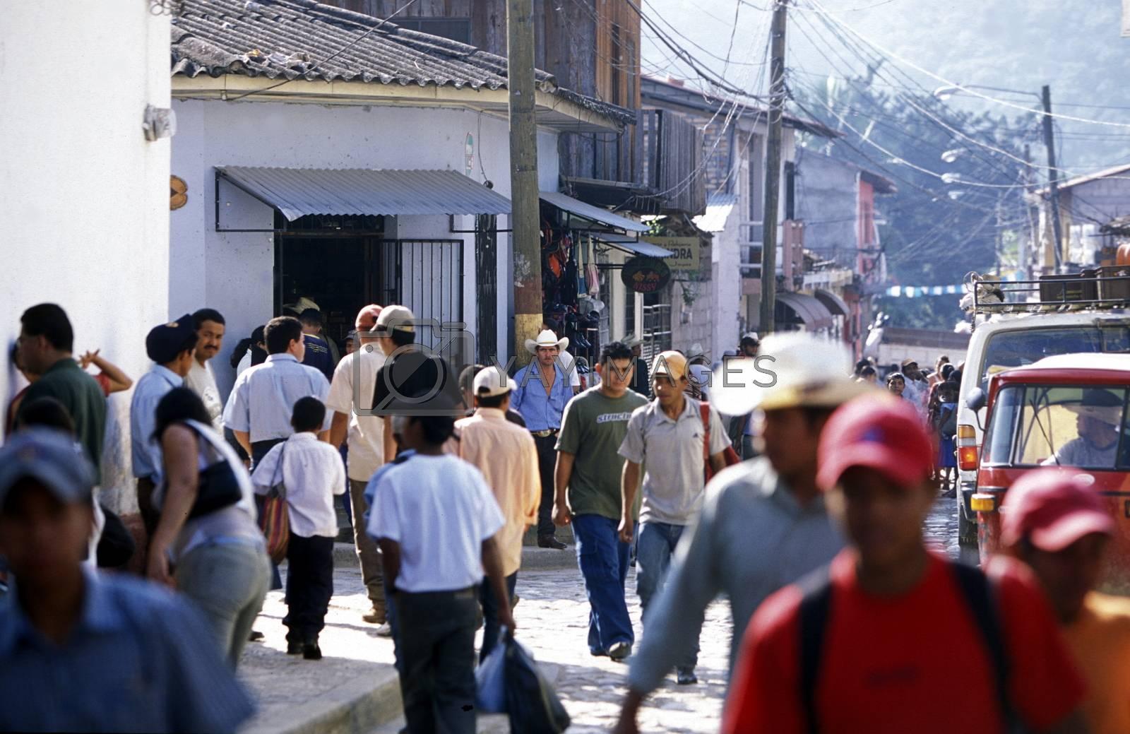 Royalty free image of LATIN AMERICA HONDURAS COPAN by urf