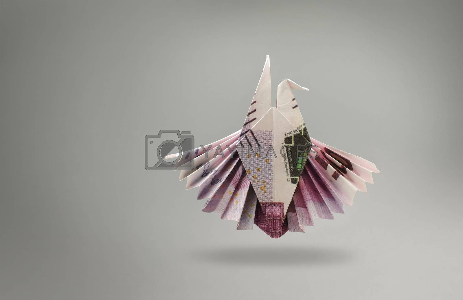 emblem of an eagle of five hundred euro banknotes. origami