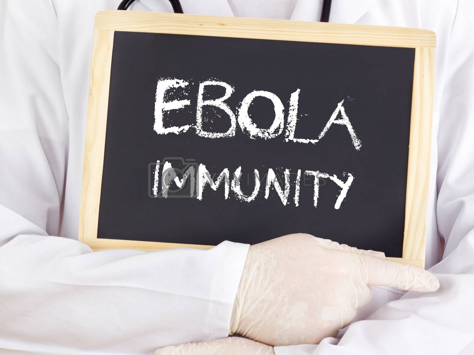 Royalty free image of Doctor shows information: Ebola immunity by gwolters