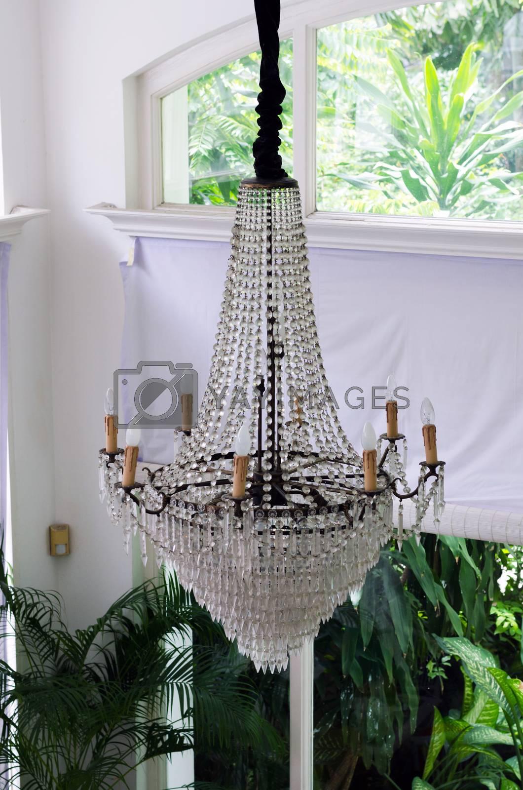 Luxury chandelier in vintage room