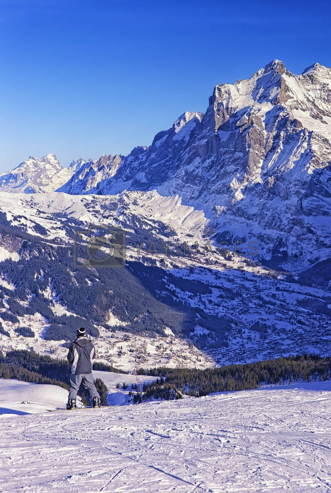 Royalty free image of Boy on snowboard at winter sport resort in swiss alps by erix200511@mail.ru
