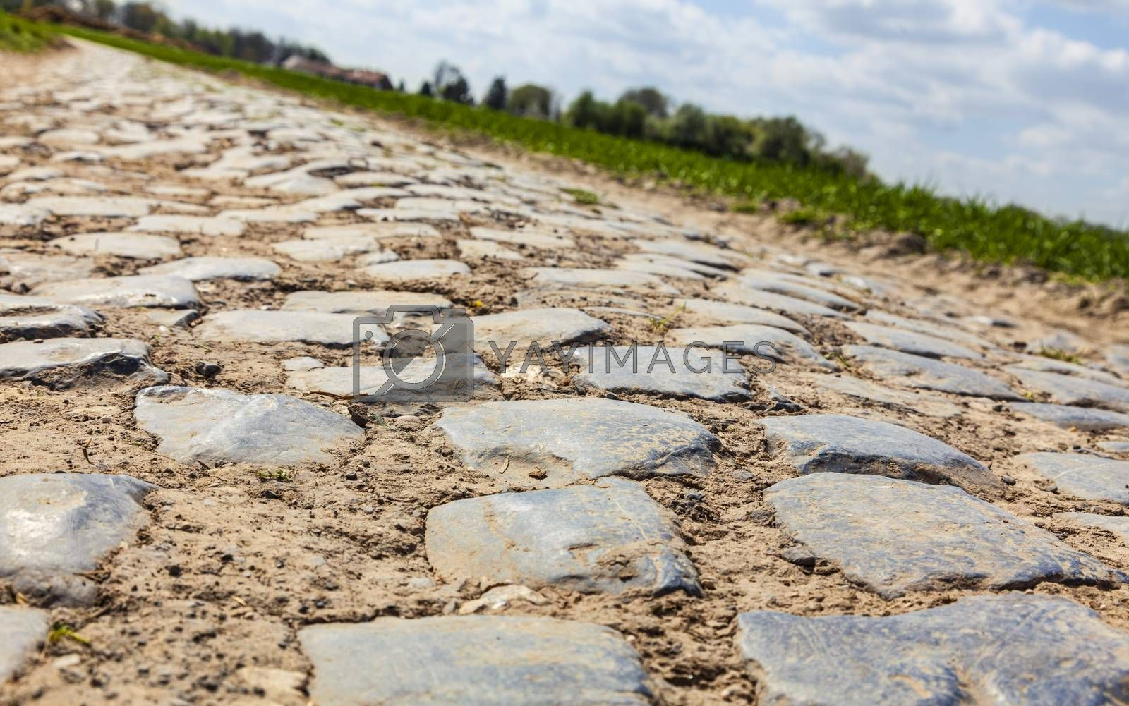 Low angle and tilted perspective of a cobbelstone road located in the North of France near Lille. On such roads every year is organized one of the most famous one day cycling race Paris-Roubaix.