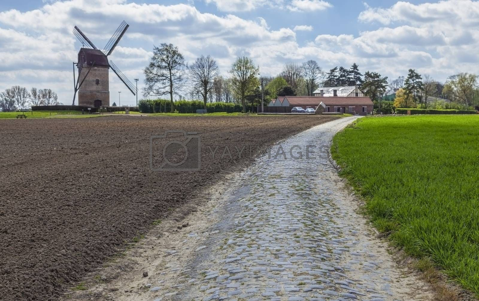 Cobbelstone road located in the North of France near Lille close to a traditional windmill (Moulin de Vertain). On such roads every year is organized one of the most famous one day cycling race Paris-Roubaix.