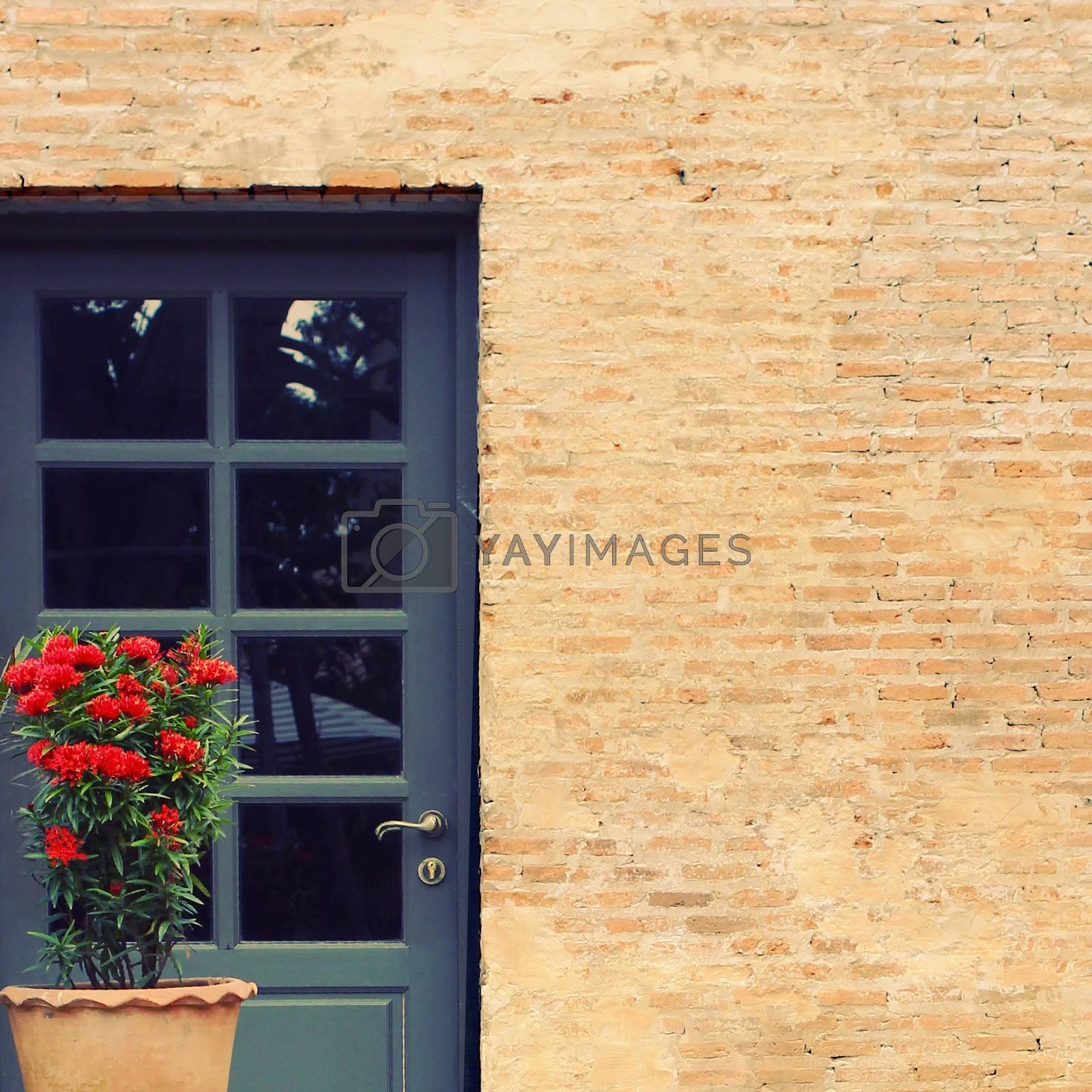 Front door of vintage house with flower pot, retro filter effect