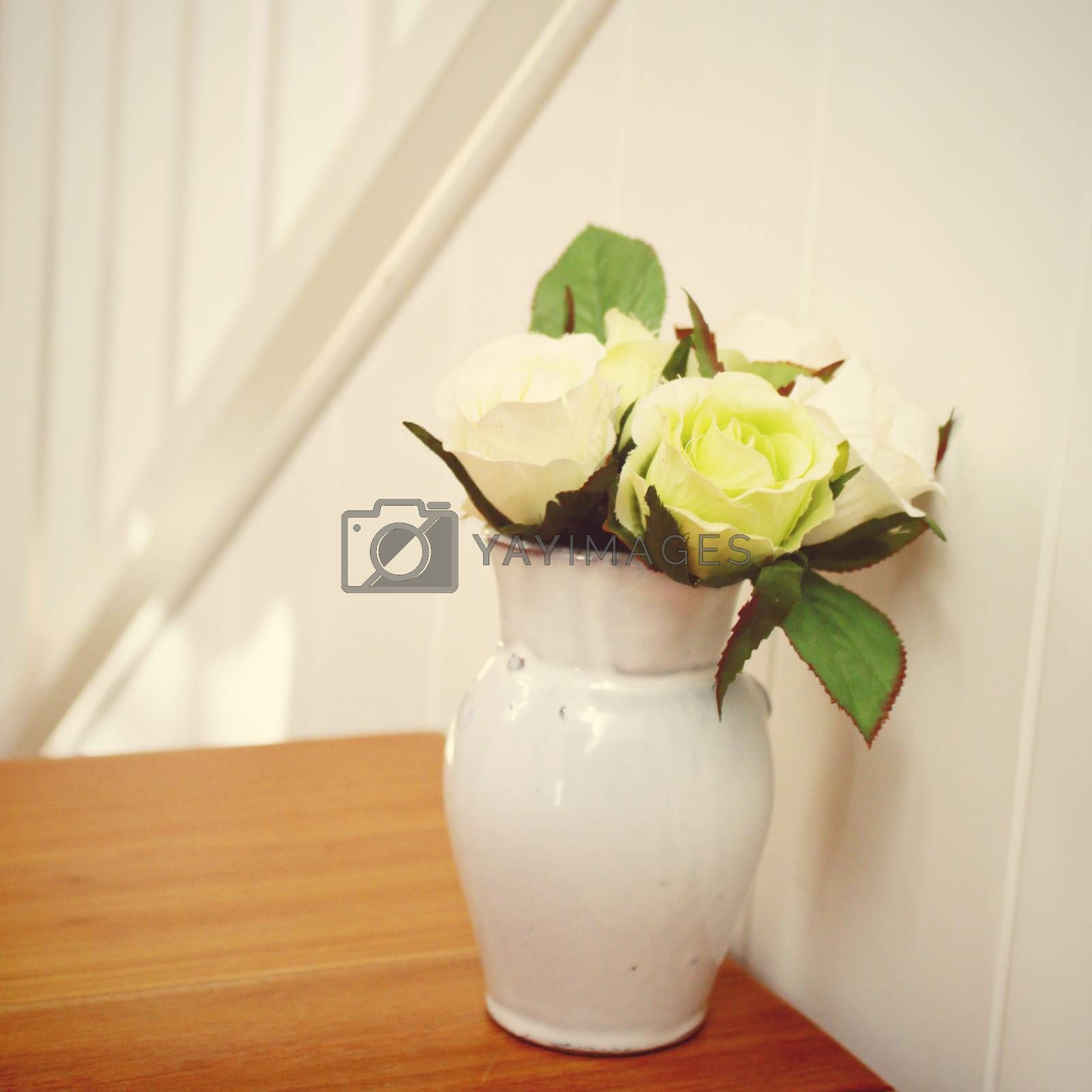 Rose in flowerpot for decoration with retro filter effect