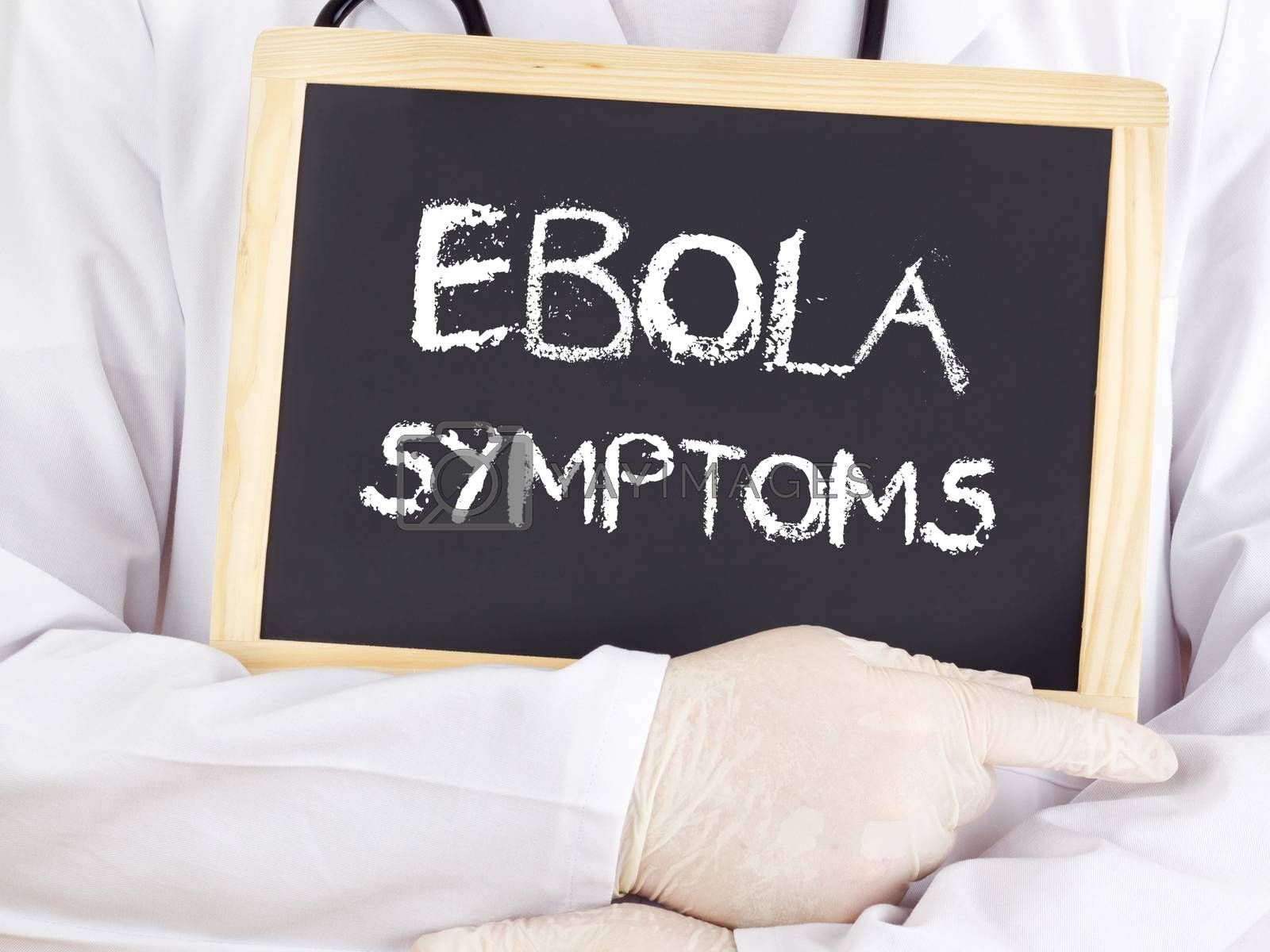 Royalty free image of Doctor shows information: Ebola symptoms by gwolters